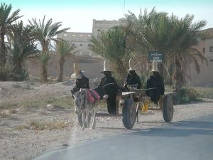 Hadhrami farmers riding theri cart over a wady.