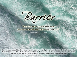 islam_science_barrier
