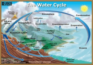 bu_WaterCycle_Hydrological cycle attest to the veracity of the Prophet