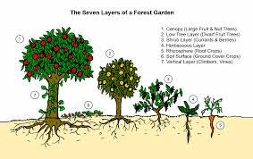 buku kebun seven layers